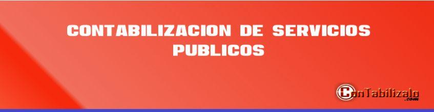 Contabilización de Servicios Públicos