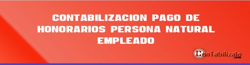 Contabilización  pago de honorarios  persona natural empleado