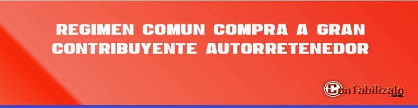Régimen Comun Compra a Gran Contribuyente Autorretenedor.